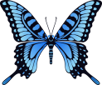 blue butterfly means marketing for startups!